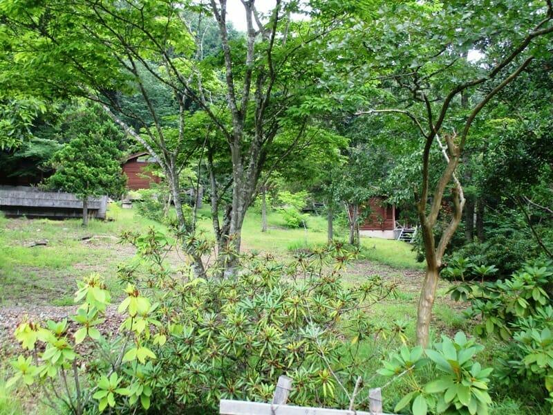 おちかた温泉の郷農園